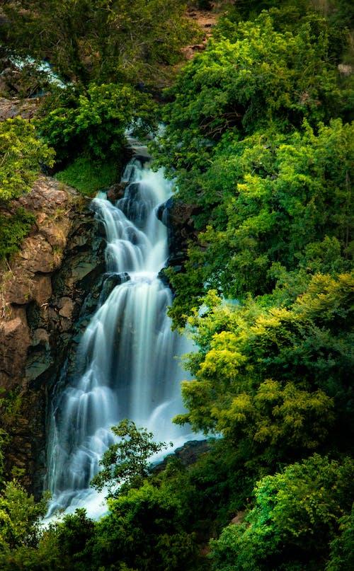 감기, 강, 경치, 경치가 좋은의 무료 스톡 사진