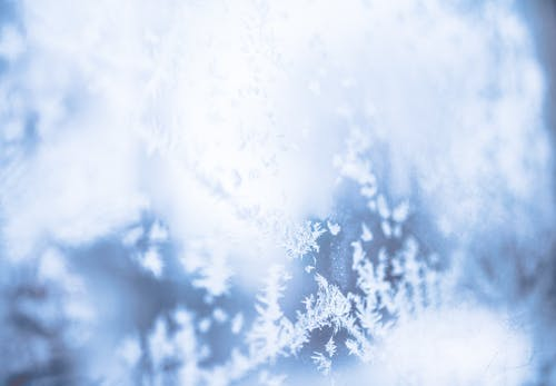 Fotos de stock gratuitas de brillante, concentrarse, copos de nieve, efecto desenfocado