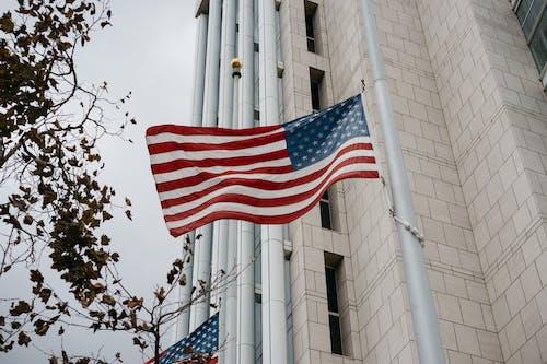 Gratis stockfoto met administratie, Amerika, Amerikaanse vlag, architectuur