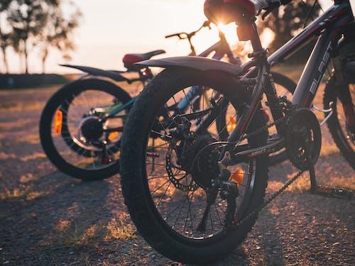 Велосипеды как популярное транспортное средство