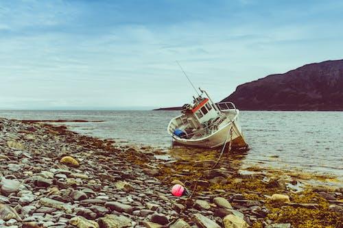 Základová fotografie zdarma na téma fjord, kameny, loď, mořské řasy