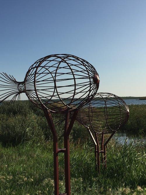 คลังภาพถ่ายฟรี ของ ท้องฟ้าสีคราม, ทะเลสาป, เมทัลลิค