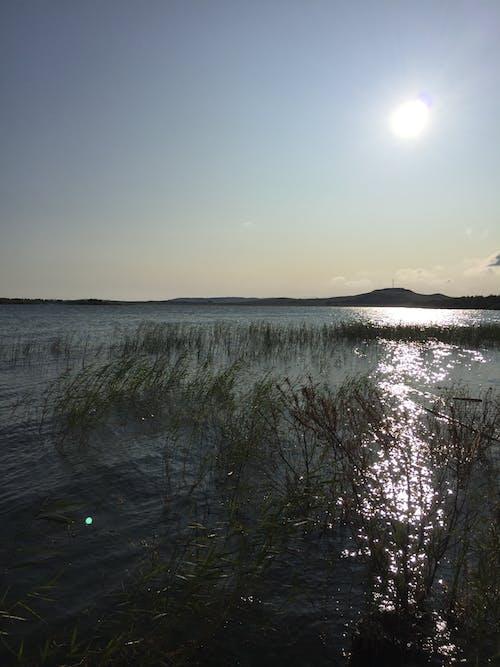 คลังภาพถ่ายฟรี ของ ดวงอาทิตย์, ท้องฟ้า, ทะเลสาป, เช้าตรู่
