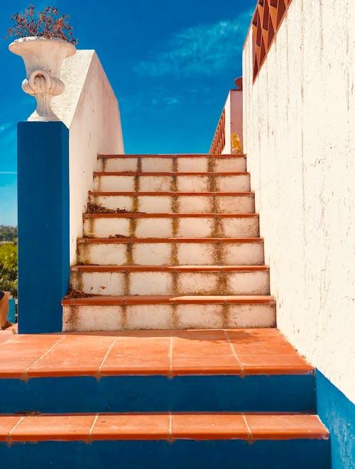 ステップ, ローアングルショット, 壁, 夏の無料の写真素材