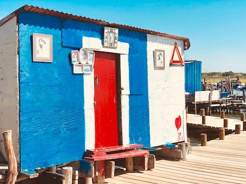 Foto d'estoc gratuïta de blau i vermell, bonic, enamorat