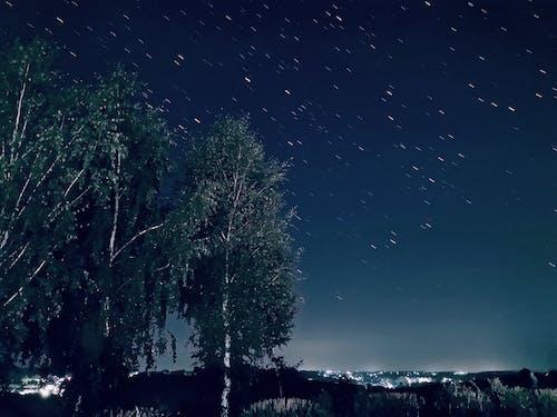 Gratis stockfoto met bomen, huawei, lange exposure, mooi landschap