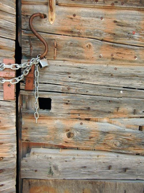原本, 釀酒, 門 的 免費圖庫相片