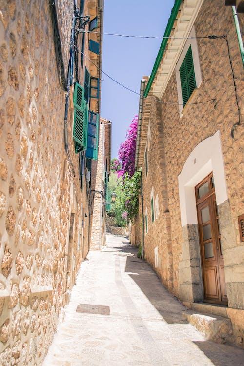 arka sokak, Çiçekler, eski kasaba, görmek içeren Ücretsiz stok fotoğraf