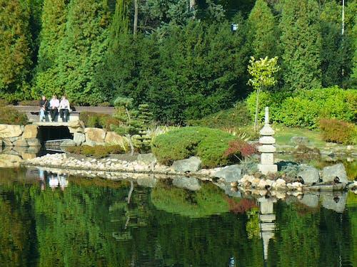Free stock photo of japoński ogród, wrocław