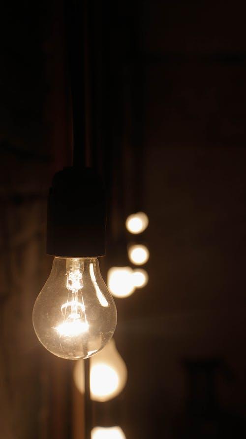 光, 宏觀, 燈 的 免費圖庫相片