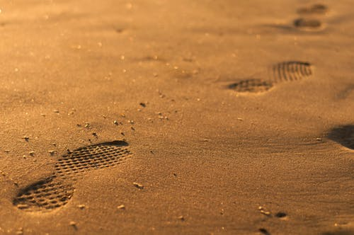 Free stock photo of beach, footsteps, golden hour, mare