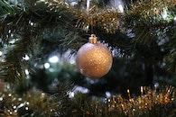 blur, tree, ball