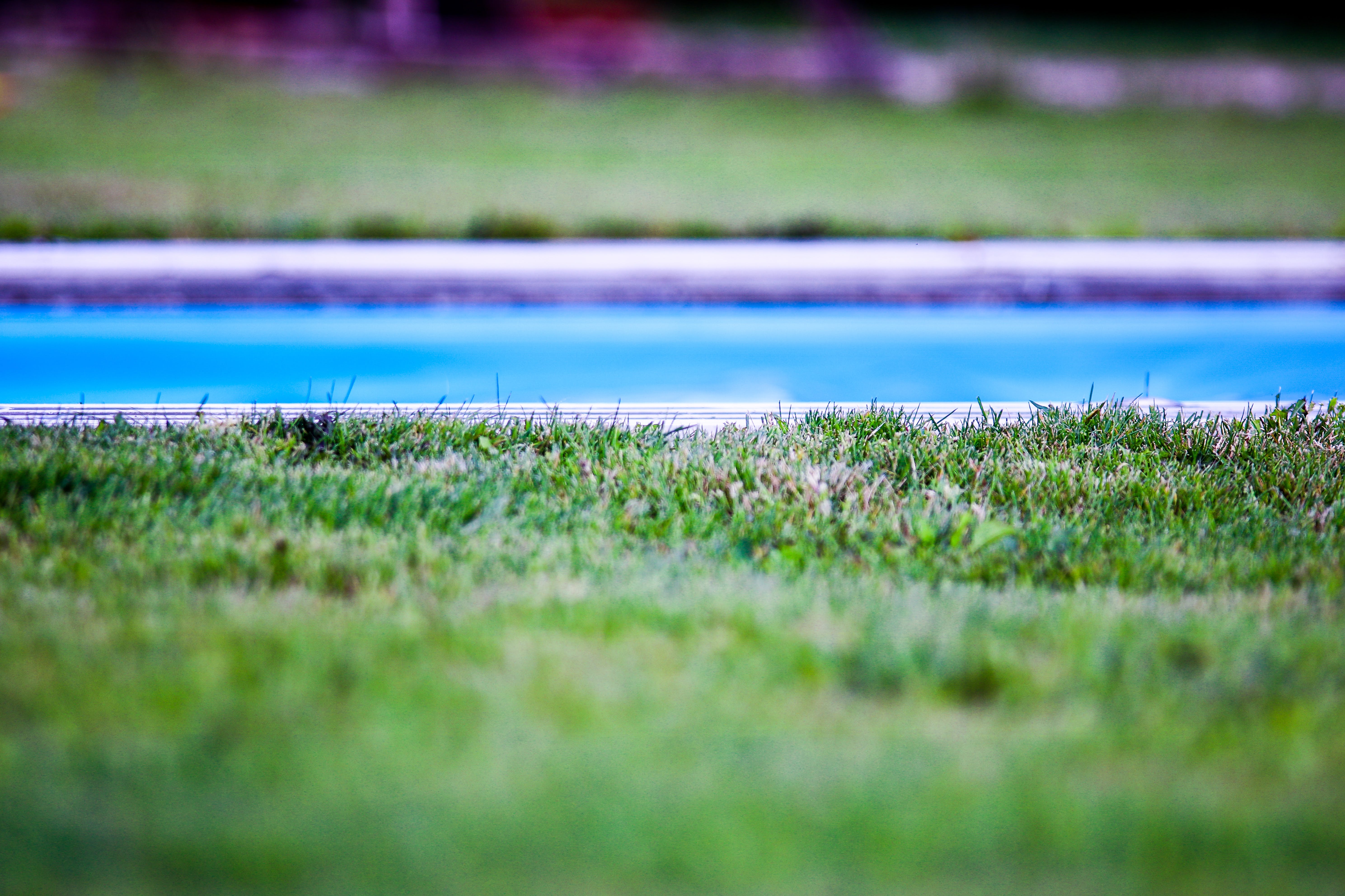 Shallow Focus Photography of Swimming Pool