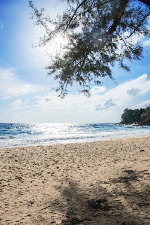 Kostenloses Stock Foto zu badeort, baum, blauer himmel, blaues meer