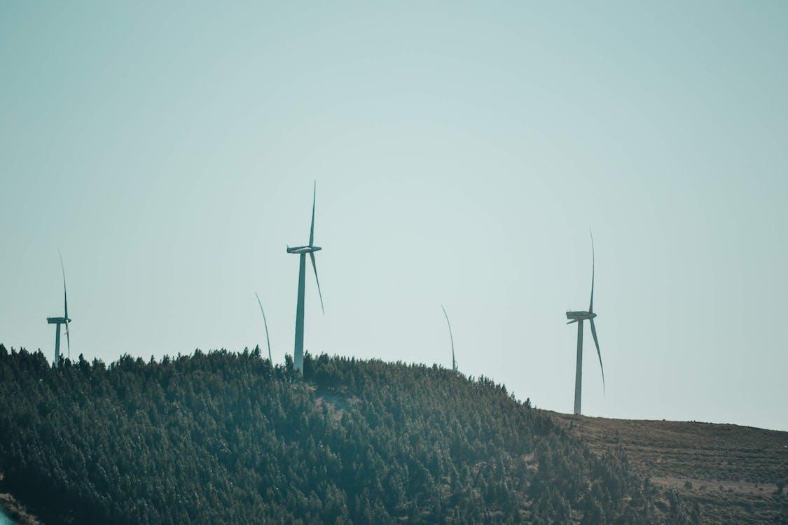 energie regenerabilă, roată de vânt, roată eoliană
