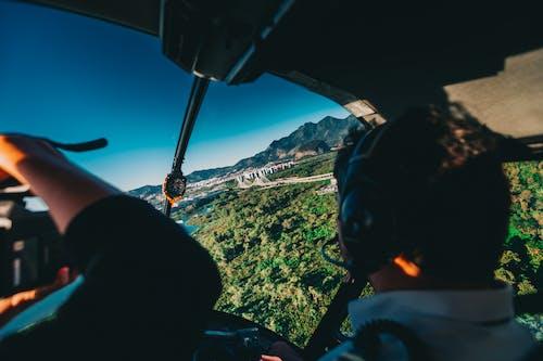 교통체계, 나무, 날으는, 남성의 무료 스톡 사진