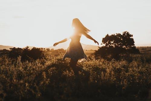 Безкоштовне стокове фото на тему «благополуччя, веселий, вечір, вечірнє сонце»