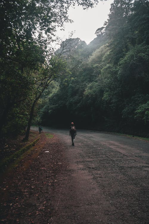 Person Walking on Side of the Road
