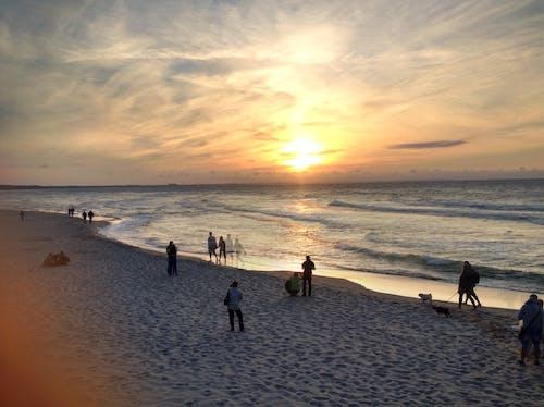 Immagine gratuita di tramonto, vedere