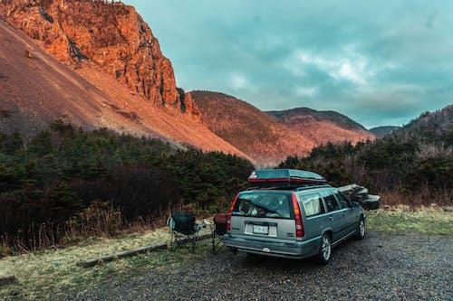 Foto profissional grátis de acampamento, ao ar livre, árvore, automóvel