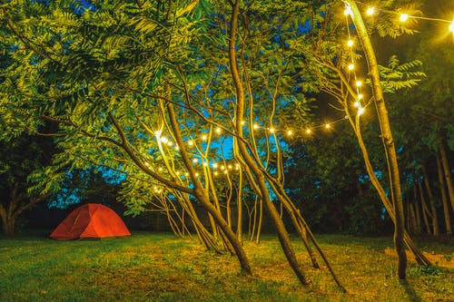 String Lights Hanging on Trees Near Dome Tent