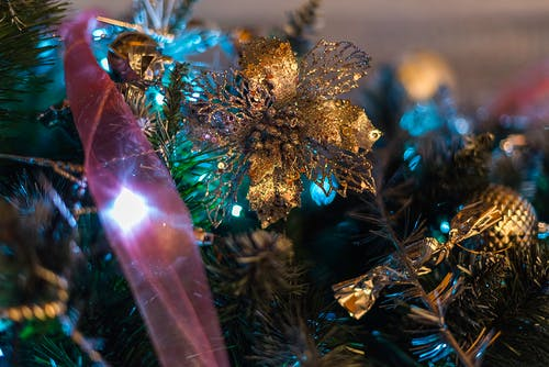 Brown Christmas Tree Decors Closeup Photography