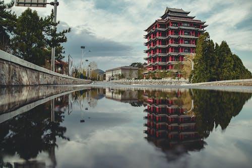 Immagine gratuita di acqua, alberi, architettura, Architettura asiatica