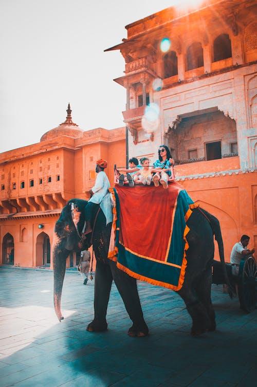 People Riding Elephant