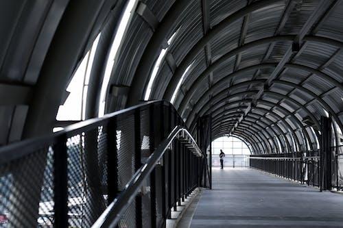Gratis arkivbilde med arkitektur, bro, dagslys, dagtid