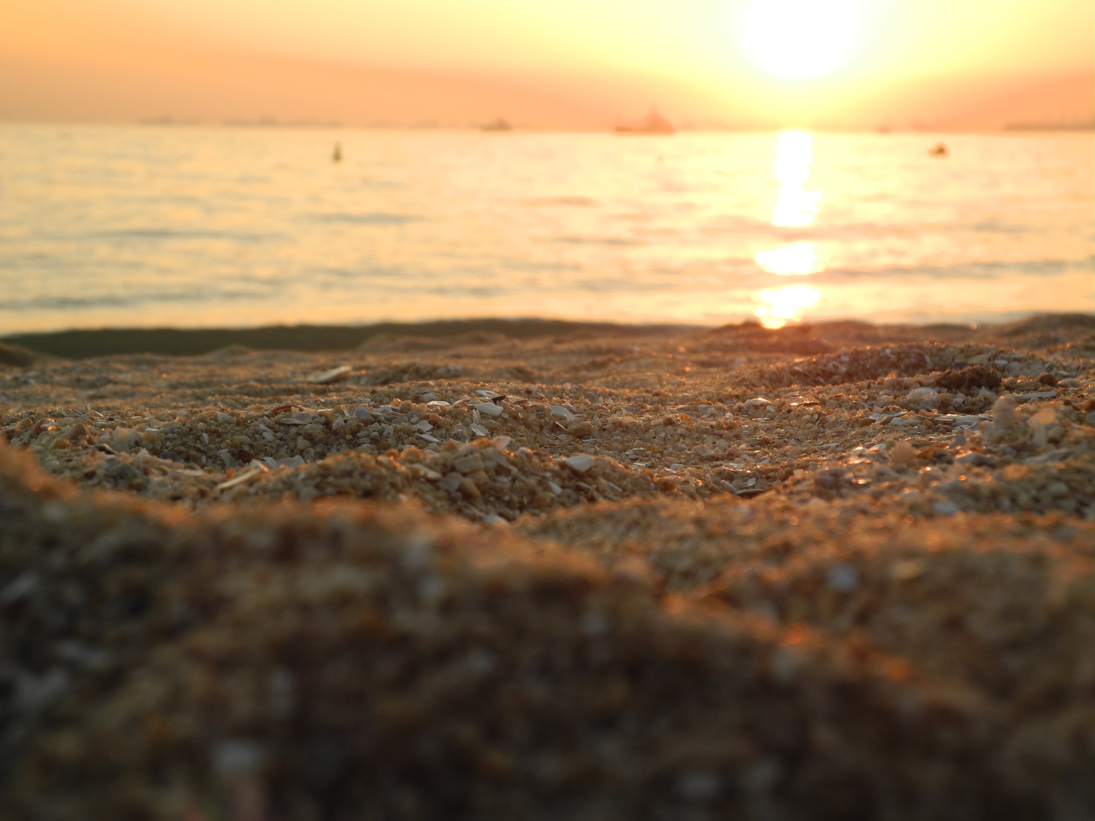 Free stock photo of sunset, beach, sand