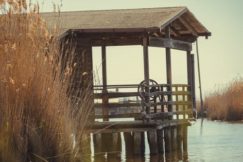 Free stock photo of lake, wooden house