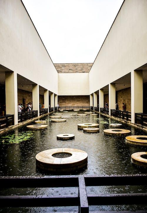Free stock photo of architecture, building, design, garden pond