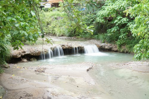 Free stock photo of nature, stream, Taipei, taiwan