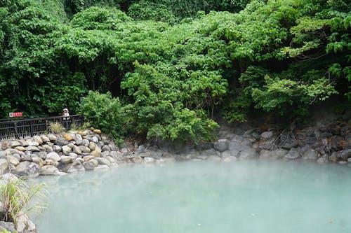 Free stock photo of beitou, hotspring, nature, Taipei