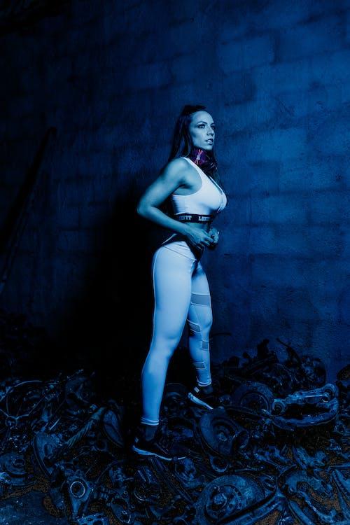Základová fotografie zdarma na téma borba, brazílie, eletronic, engrenagem