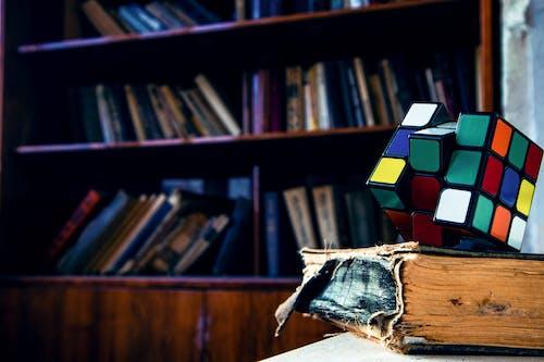 Gratis arkivbilde med bibliotek, bokhyller, fargerik, ferdighet