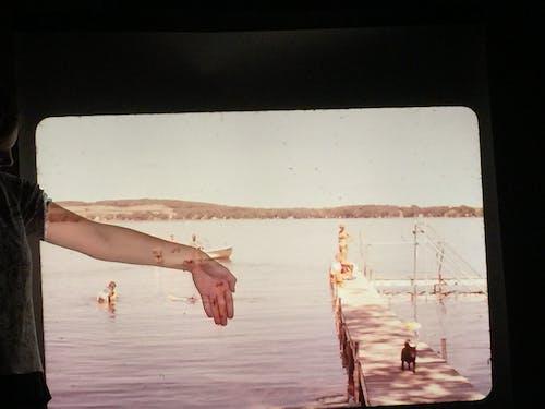 Ảnh lưu trữ miễn phí về bến tàu, cánh tay, cũ, đồng cỏ