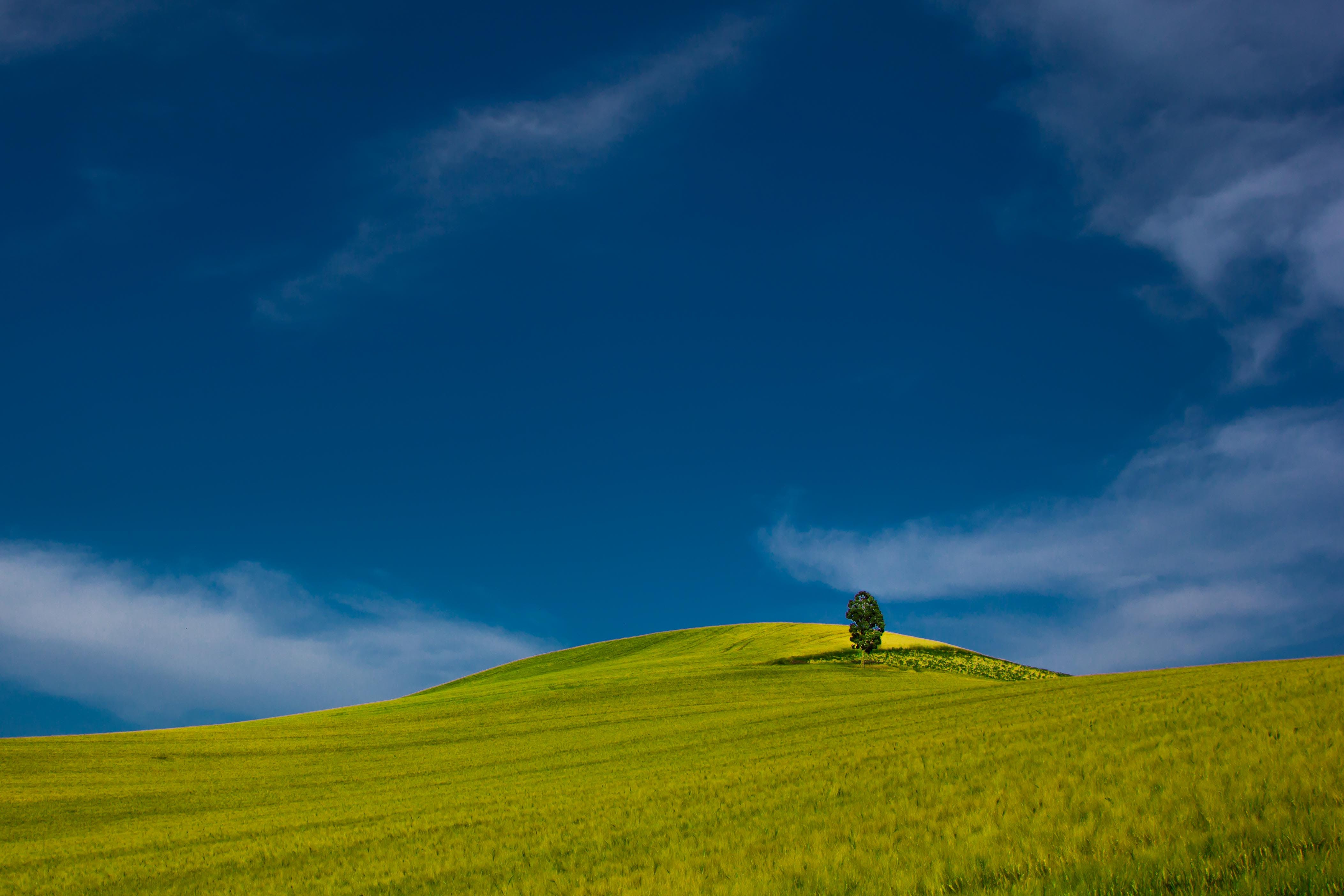 agriculture, blue, blue sky