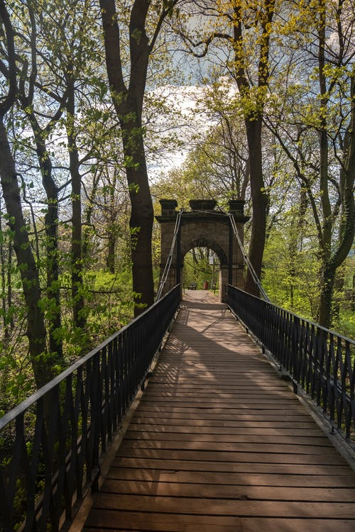 Darmowe zdjęcie z galerii z drewniany most, łańcuch, most, most łańcuchowy