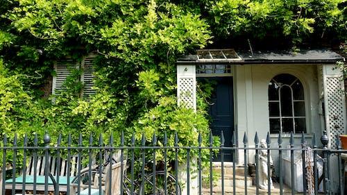 Gratis stockfoto met bomen, cottage, deur, groen