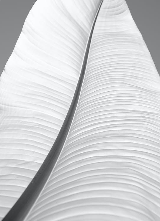 4k tapety, abstraktné umenie, abstraktný