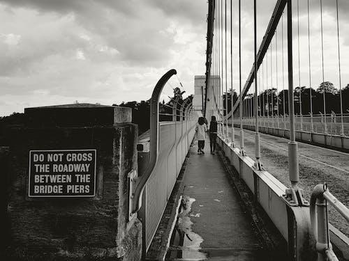 シティ, ブリッジ, モダン, 交通機関の無料の写真素材