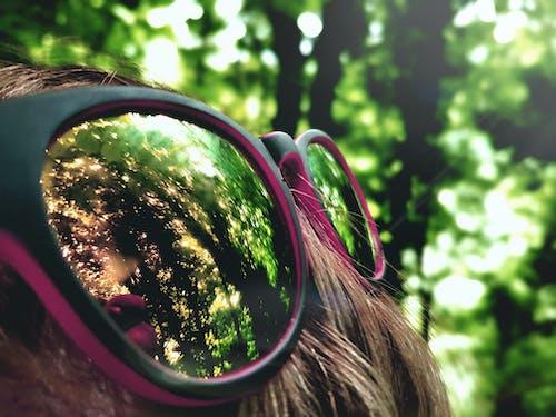 Foto d'estoc gratuïta de bosc, cabell, imatge reflectida, marc d'ulleres