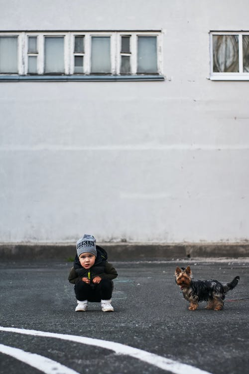 Photo of Little Boy Squatting Next to a Dog