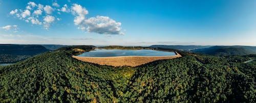 Immagine gratuita di acqua, alberi, ambiente, campagna