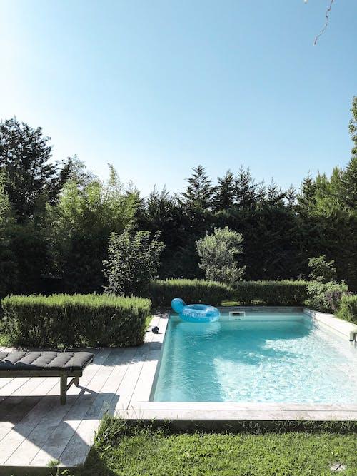 Immagine gratuita di acqua, alberi, bordo piscina, piscina