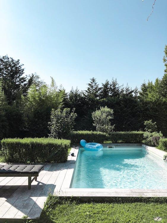 agua, arboles, junto a la piscina