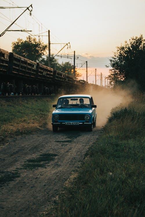 Foto d'estoc gratuïta de a l'aire lliure, arbres, camí polsegós, capvespre