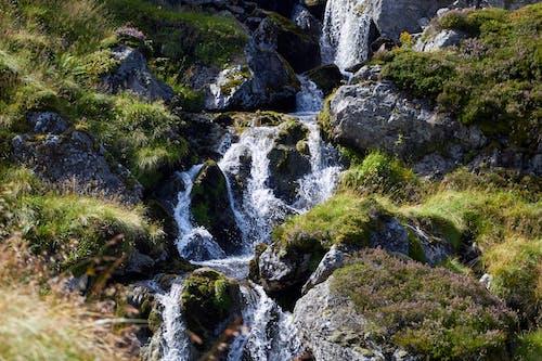 Foto d'estoc gratuïta de blau, cascada, saltant d'aigua, verdor