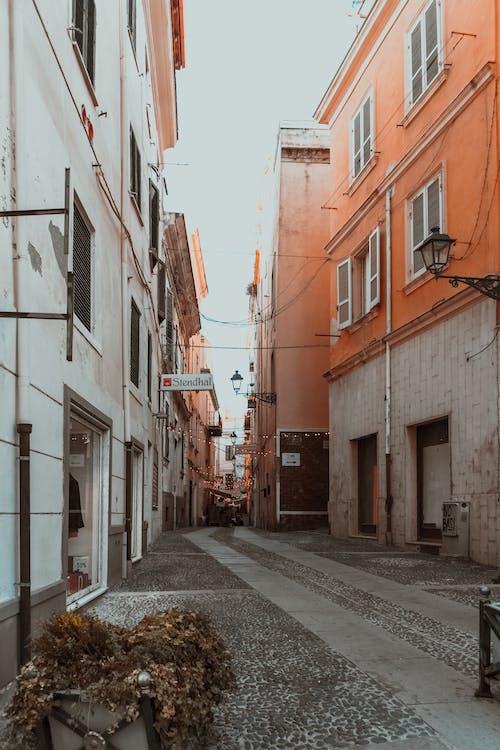 Foto profissional grátis de alameda, arquitetura, desocupado, edifícios